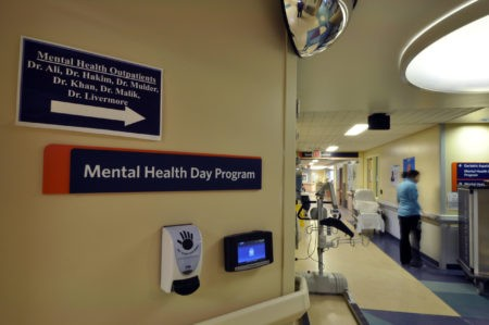 Mental Health Day Program