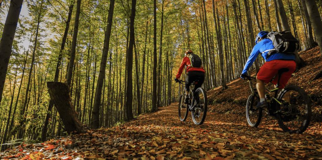 Barrie mountain biking